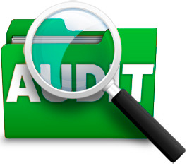 Auditing  &Quality Assessment